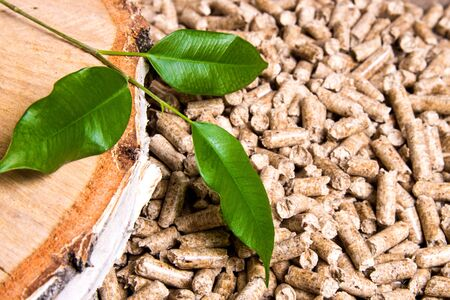 Wood pellets, birch and twig with leaves. Biomass Pellets- cheap energy. The concept of biofuel production Imagens