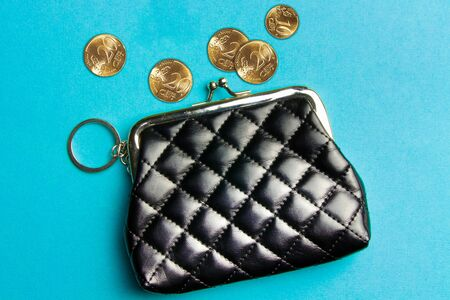 Purse for coins.Wallet for change.