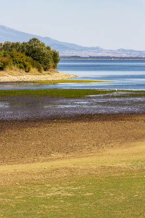 September Kerkini Lake landscape with low water level, birds, vegetation and mountain in the background
