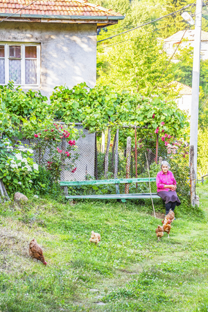 GUDEVITSA, BULGARIA - JULY 22, 2017: Unidentified old woman dressed in a purple shirt grazes her chickens sitting on a bench in front of a rural house