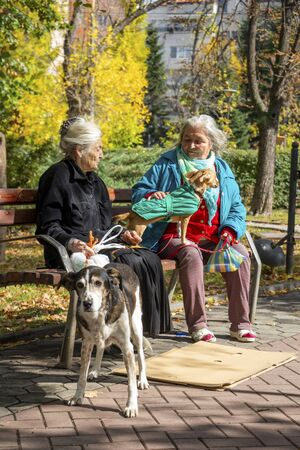 SOFIA, BULGARIA - OCTOBER 08, 2017: Two old women with their dogs on a bench in a public park on a sunny autumn day Editorial