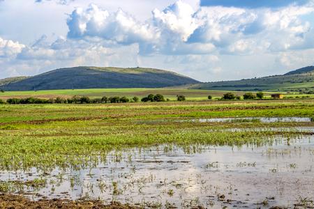 Dragoman natural karst Marsh beautiful May landscape in Sofia Province, Bulgaria - the biggest Bulgarian natural karst wetland with covered with clouds beautiful sky 写真素材