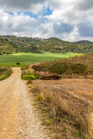 Gravel road through agricultural area on the Camino de Santiago, Way of St. James between Villamayor de Monjardin and Los Arcos in Navarre, Spain
