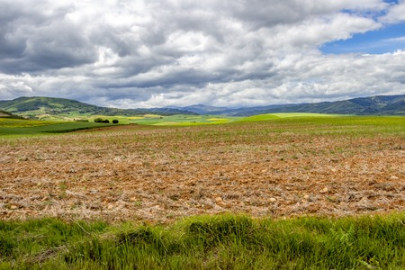 Beautiful agricultural landscape on the Way of St. James, Camino de Santiago between Ciruena and Santo Domingo de la Calzada in La Rioja, Spain Stock Photo