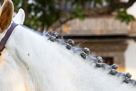 Horse mane hairstyle at the procession of Feria de Cordoba, Feria de Nuestra Senora de la Salud or Cordoba Fair in May, 2019 Stock Photo