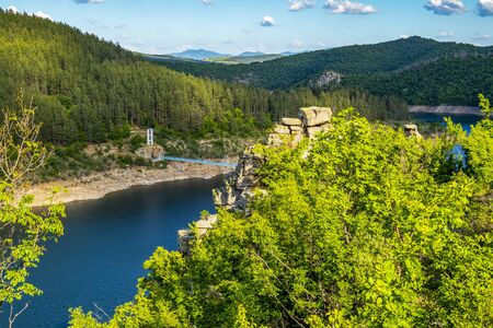 Kardzhali Reservoir with the suspension bridge between the villages Suhovo and Duzhdovnitsa in Kardzhali Municipality, Bulgaria behind blurred Euphorbia plants