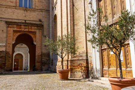 FERMO, ITALY - JUNE 01, 2018: Old entrance arch to Scuola Media Statale or Secondary Public School Ugo Betti, the Church of San Francesco entrance with olive trees to the right 新闻类图片