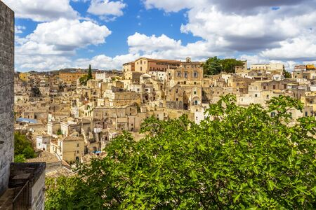 Scenic panoramic sunny view of Matera, Province of Matera, Basilicata Region, Italy behind a fig tree under beautiful cloudy summer sky