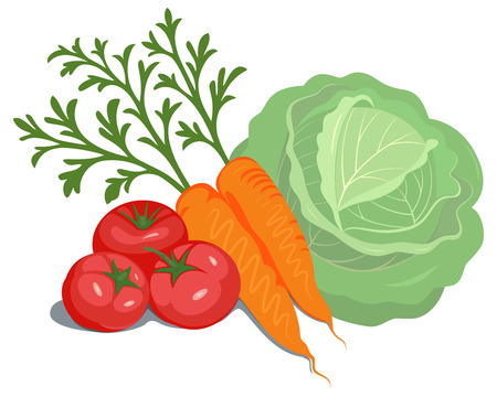 Vegetables composition illustration