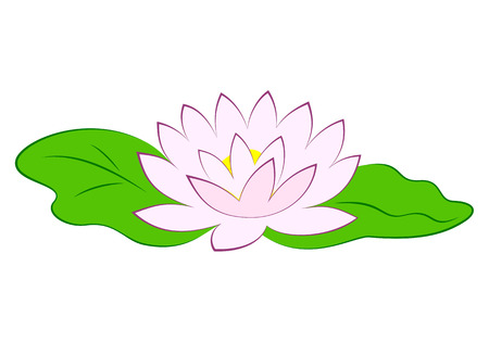 Beautiful pink lotus flower with green leaves in pond. Poster with water lily vector illustration isolated on white background. Ilustrace