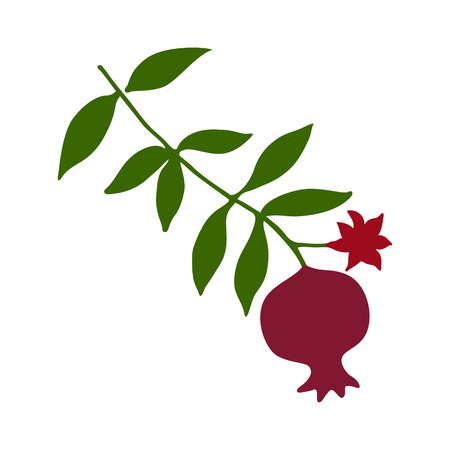 Sketch with pomegranate on branch with green leaves and flower silhouette. Red pomegranate fruit icon vector illustration.