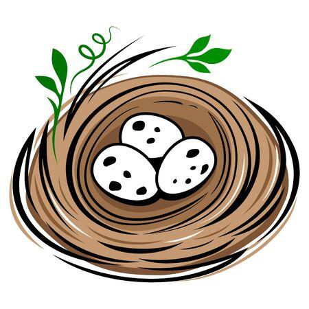 Birds nest with eggs isolated on white background. Cartoon bird eggs nest draw vector illustration.