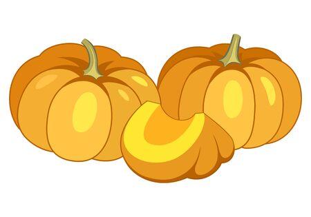 Orange pumpkins vector illustration isolated on white background.