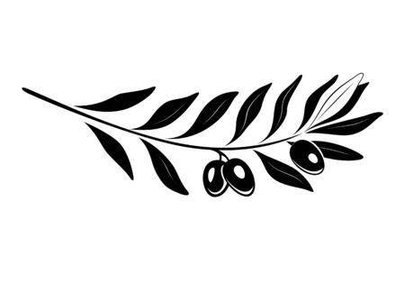 Gałązka oliwna z czarnymi oliwkami i liśćmi. Retro godło ekologicznej oliwy z oliwek wektor ilustracja na białym tle. Ilustracje wektorowe