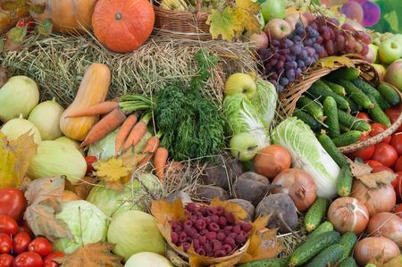 Fresh organic autumn vegetables and fruits background. Autumn fruit and vegetables top view.