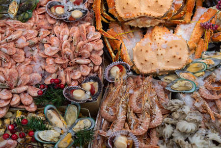 Seafood on ice at the fish market. Sea food background top view. Stock Photo