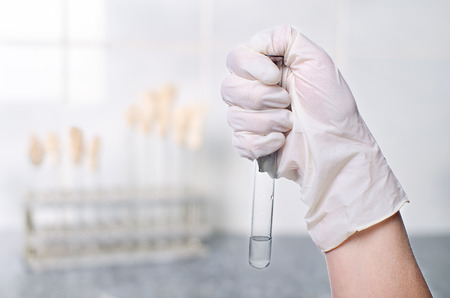 gloved hand holding a glass test tube of clear liquid on a light background research lab, scientist hand during medical test or chemical experience