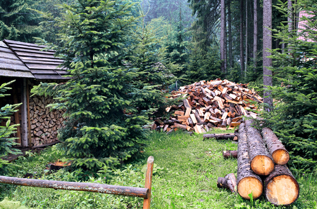 Chopped firewood logs in pile. Nature background. Wood preparation. Large pile of fresh cut wood