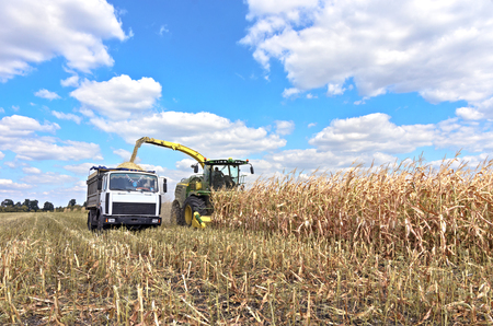 Mikhailovka, Ukraine - August 25: Self-Propelled Forage Harvester John Deere 8300 and truck. Harvesting maize and processing in forage in the field near the village Mikhailovka, Central Ukraine August 25, 2017 Editorial