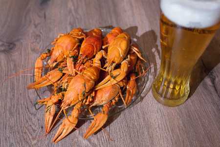 cancers: Cancers to beer, dill, boiled crawfish, beer snacks, pub Stock Photo