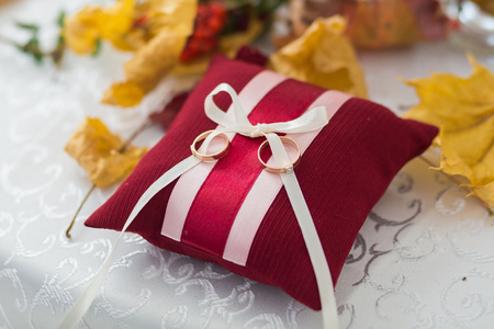 silver maple: Beautiful autumn background with wedding rings and Pillow