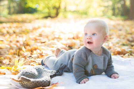 Beautiful baby boy six month old crawling in fallen leaves - autumn scene. Toddler have fun outdoor in autumn yellow park Stock Photo
