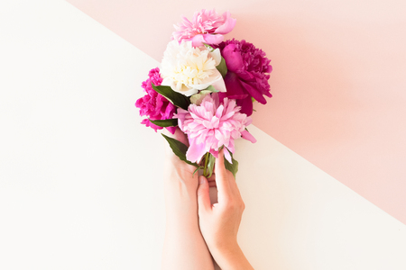 Top view of floral composition of beautiful pink rose flower in woman hand on white and pink background, flat lay, copyspace