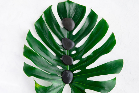 Grey spa background, palm leaves and black wet stones, top view 免版税图像