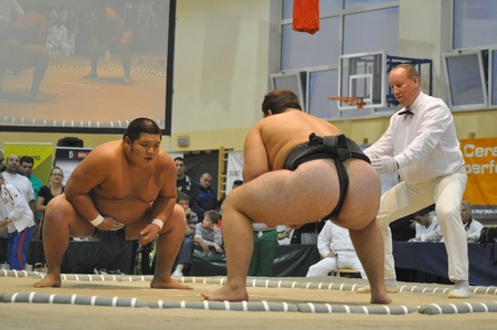 Warsaw, Poland - October 17, 2010 - Contenders fighting at The World Sumo Championships Editorial