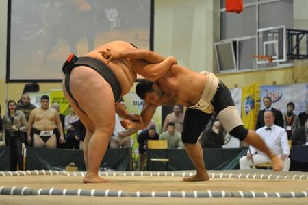 Warsaw, Polen - 17 oktober 2010 - mededingers gevechten op het wereldkampioenschappen Sumo Redactioneel