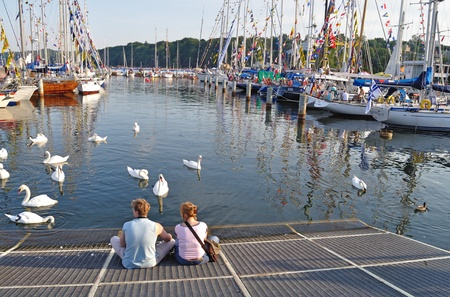 Gdynia, Poland - July 4, 2009 - Young couple observes swans in the marina during the Tall Ships Races Baltic 2009. Editorial