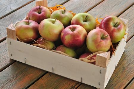 Apples Stock Photo - 9684383