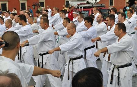 Warsaw, Poland - August 29, 2010 - Training Kyokushin Karate with 300 competitors - Summer Seminar Shin Kyokushin.