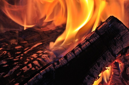 Burning wood in the fireplace photo