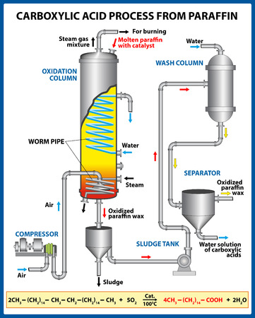 Carboxylic acid process from paraffin. Vector illustration