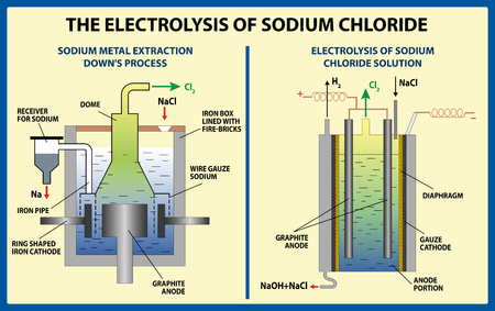 The Electrolysis of Sodium Chloride. Vector illustration