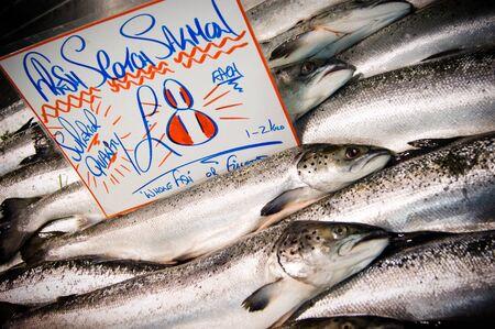 scotish: Selection of fresh Scotish Salmon Stock Photo