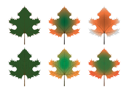 Set of fall leaves variations for propagations and design purposes