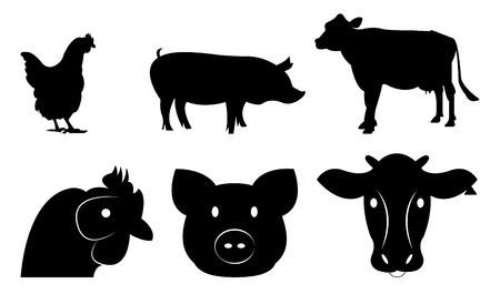 Set of livestock for design and info graphic