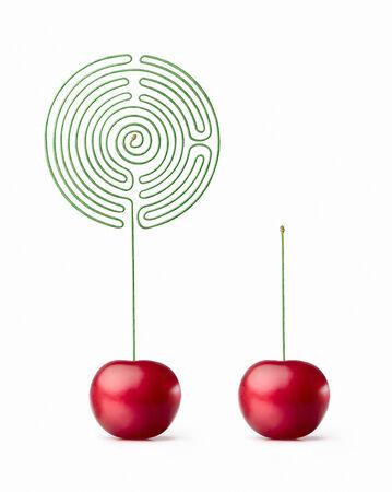 Cherry. labyrinth Фото со стока