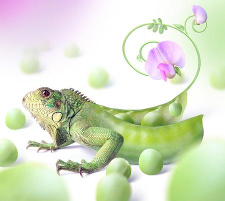 Green dragon Фото со стока