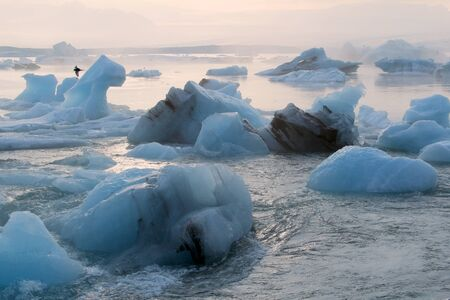 Iceberg in the glacier lagoon. Summer season. Iceland