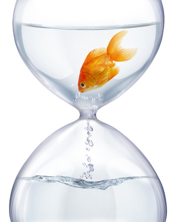 transience: Aquarium hourglass. It symbolizes the transience of time and changes in life.