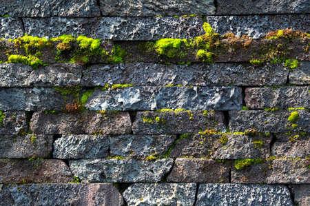 苔の成長と自然石で作られた壁