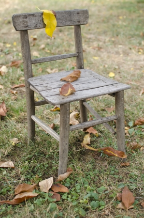 old furniture: Old chair in autumn with the leaves. Stock Photo