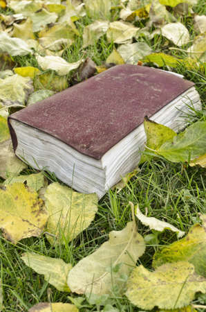 Book with the leaves in autumn. photo