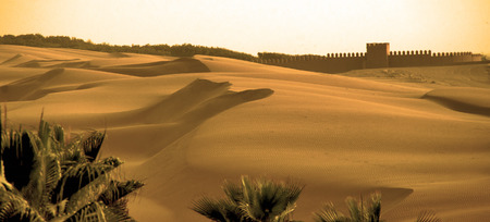 Sands of Agadir 免版税图像