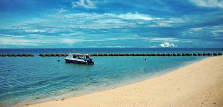 Selingan - turtle island 版權商用圖片
