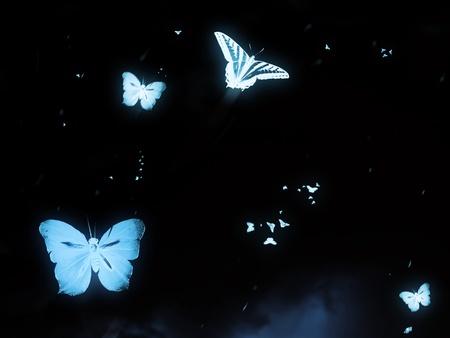 scène papillon de lumière la nuit