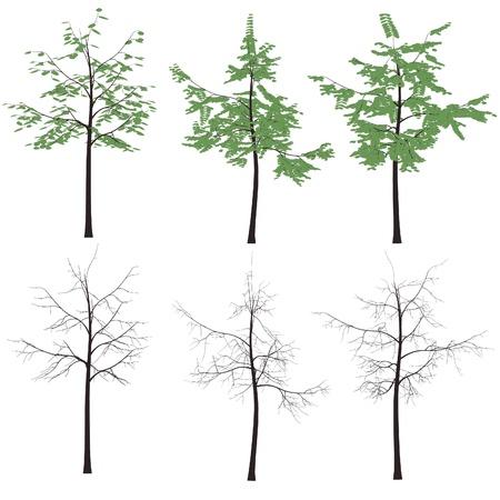 print vector tree leaves trunk vector silhouette pack Illustration